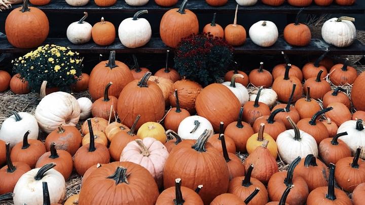 Spend Your Halloween The Spookiest Ways in2019
