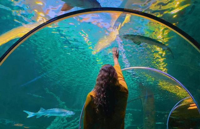 My Underwater Tunnel Adventure Inspired by a JapaneseDrama
